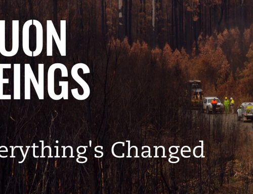 Huon Beings – Everything's Changed
