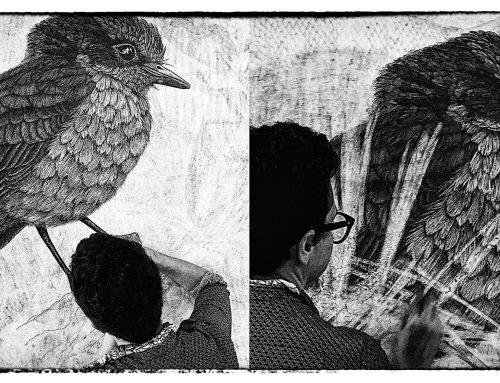 Extinction Studies Lucienne Rickard